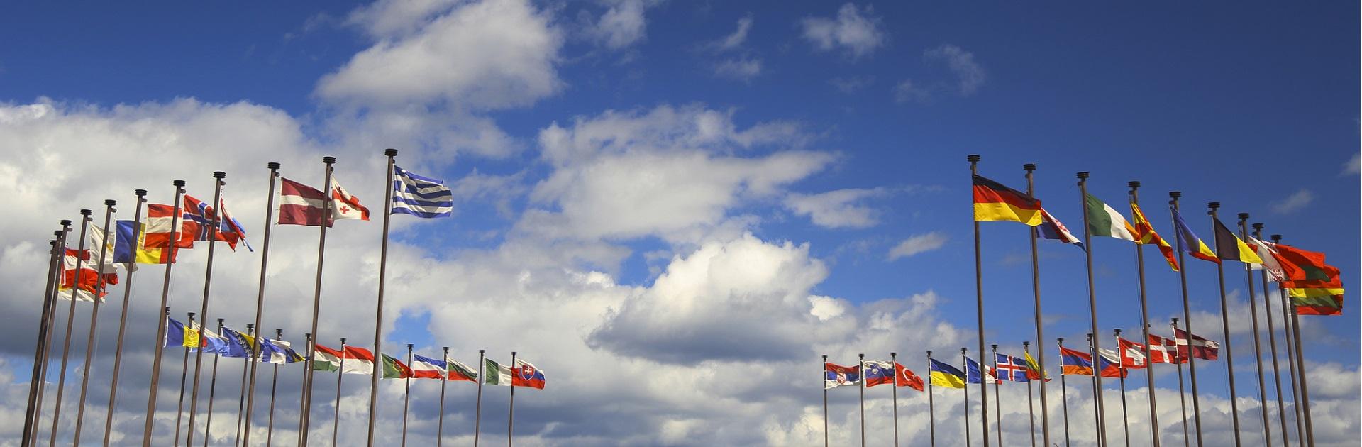 praktrijkmiddag internationalisering